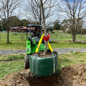 Avant 423 Compact Mini Loader Ghostwood Horticulture Landscapes Landscaping Machinery